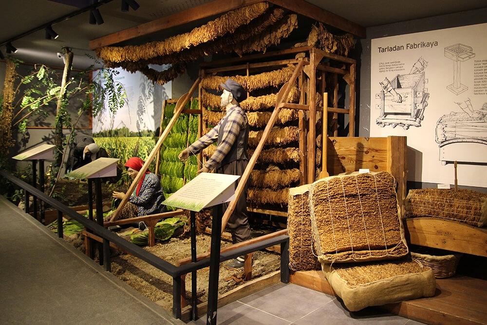 Samsun Kent Müzesi - Turizm Haritası